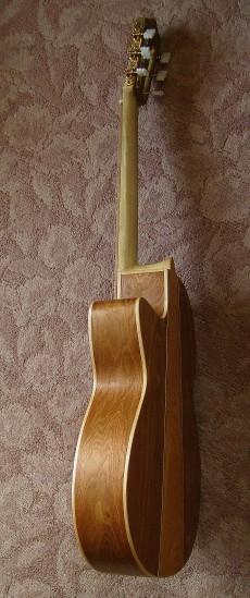 菊ギター第14号完成ヨコ2全体