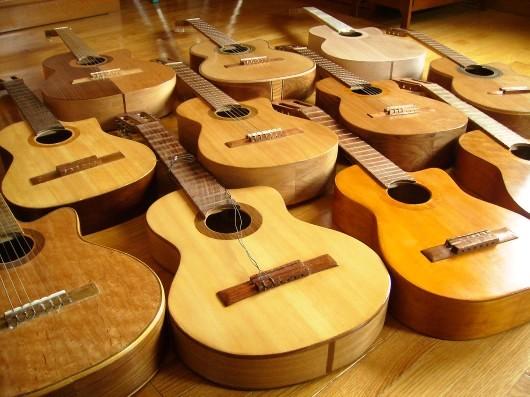 菊ギター群斜イメージ