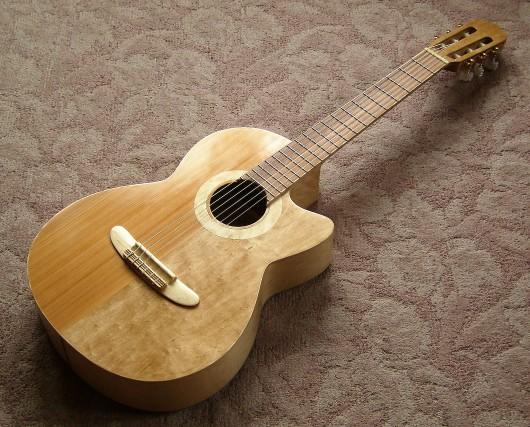 完成表全体斜 菊ギター第15号