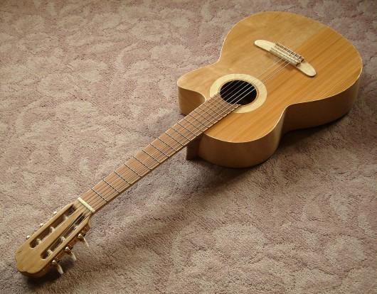 完成表全体上から右斜 菊ギター第15号