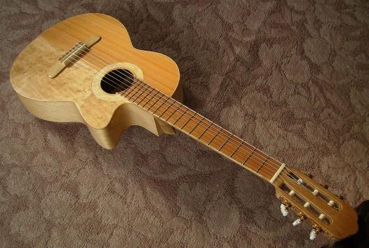完成表全体上から左斜 菊ギター第15号