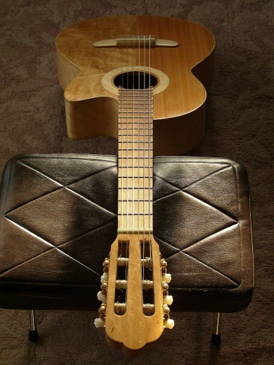 完成真上から表全体 菊ギター第15号
