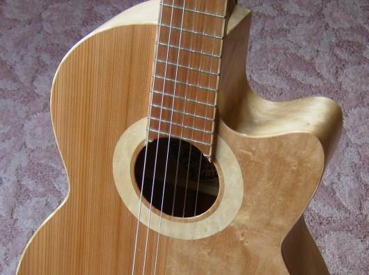 菊ギター第15号ロゼッタアップ