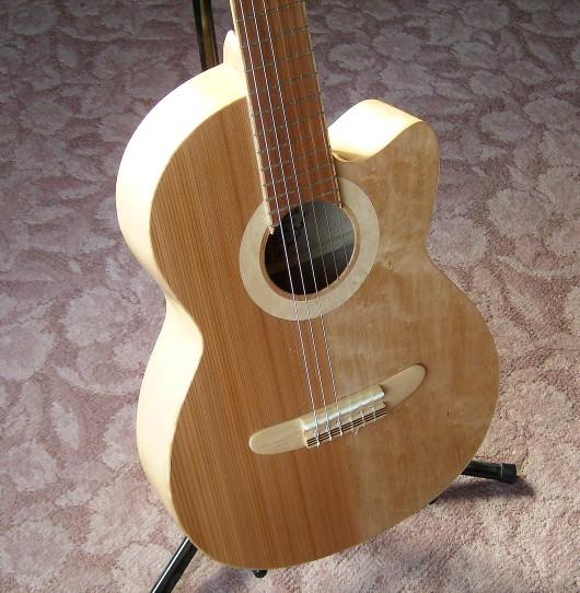 逆光で 菊ギター第15号
