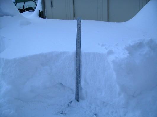 大雪42センチ1