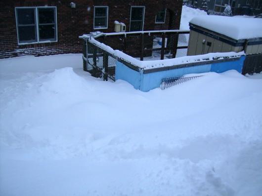 雪の積もり具合