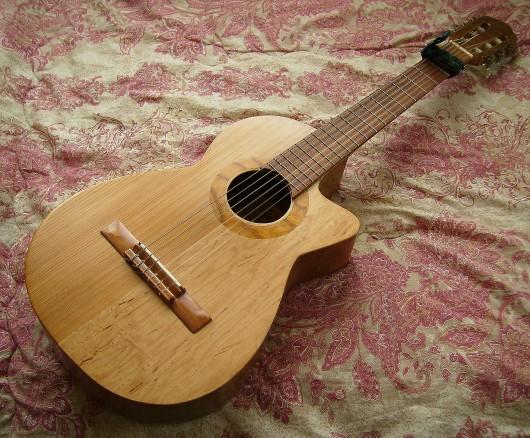菊ギター第10号全体斜表