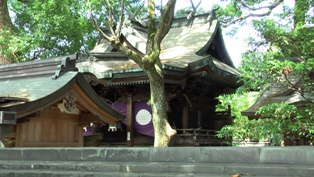 桜井神社 本殿2