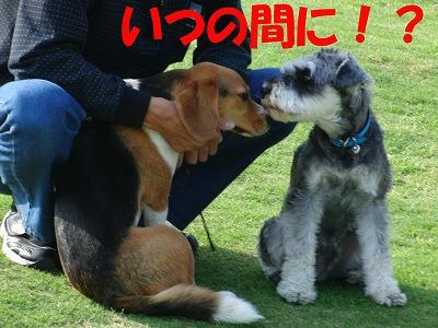 CIMG0075.jpg