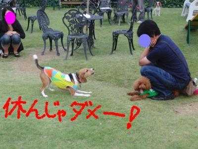 CIMG3794_20111012220539.jpg