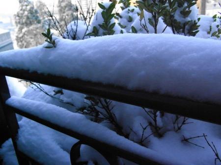 ジュネーブ雪