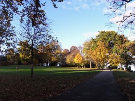秋の散歩02