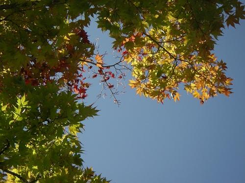 2009.10.風景