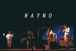 wayno-dm.jpg