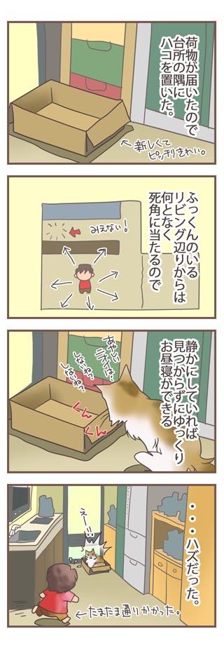 20091205_hako_a.jpg