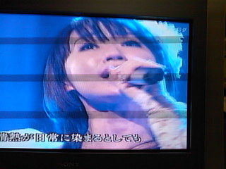 SN3F0046.jpg