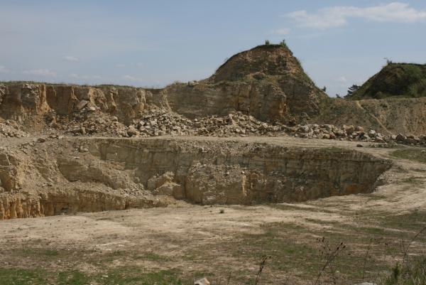 ICIRIPICIRI60 122