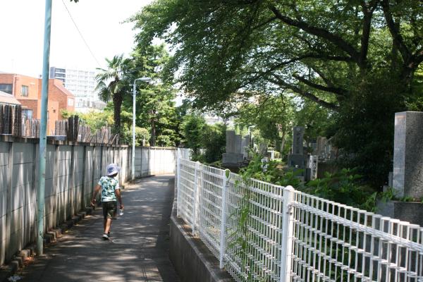 japankialliras2011 116
