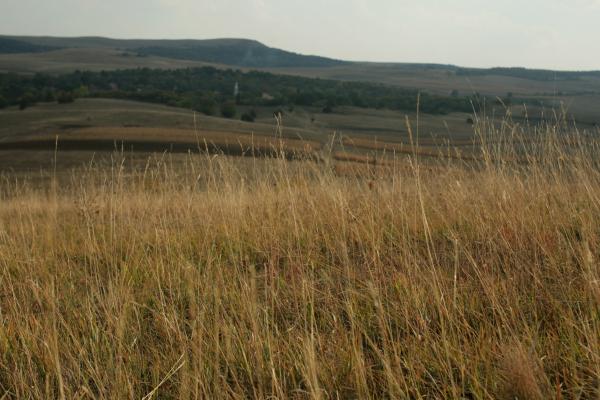 kalotaszeg201110 532