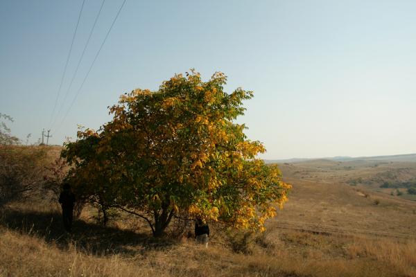 kalotaszeg201110 427
