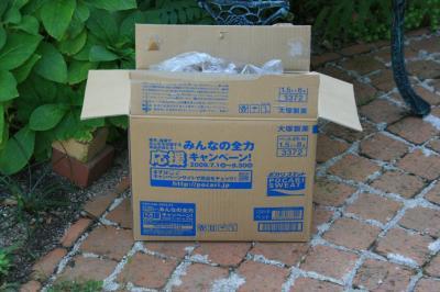 2009-09-20_07.jpg