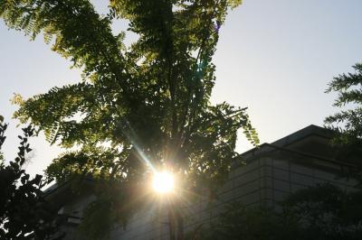 2009-09-20_69.jpg