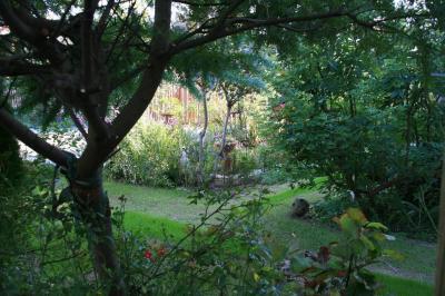2009-10-10_18.jpg