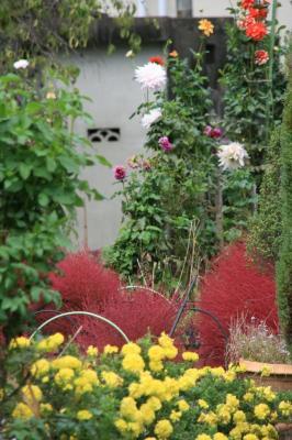2009-10-17_09.jpg