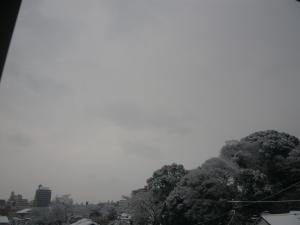 yukikonkon