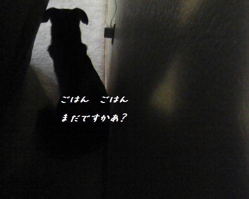 Photo06181751.jpg