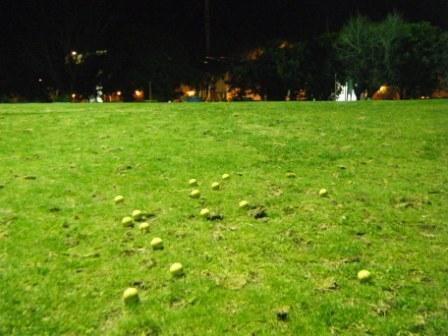 2009_0919shot0006.jpg