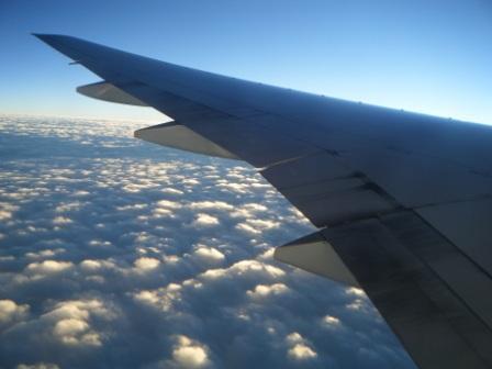 2010_01060012.jpg