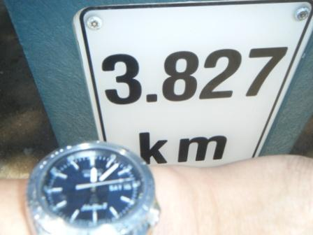2010_01160019.jpg