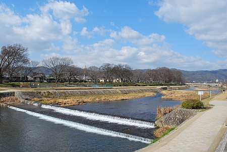 賀茂川がゆったりと・・・