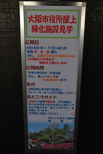 大阪市役所の屋上