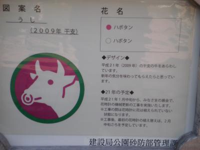 myabi+7419_convert_20090908005551.jpg