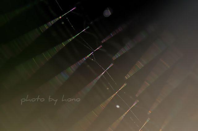 20110709-1_picnik.jpg