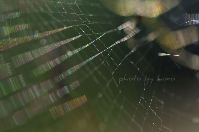 20110709-2_picnik.jpg