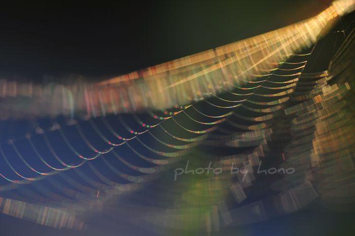 20110719-3_picnik.jpg