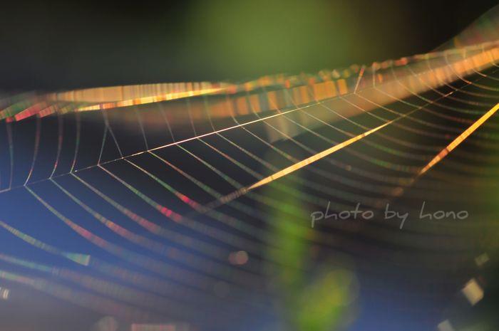 20110719-5_picnik.jpg