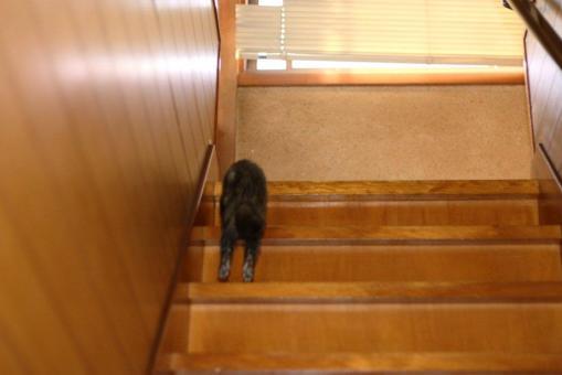 ジャック、階段を上がる
