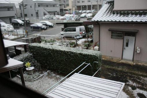 初雪2階からの様子(アップで!)