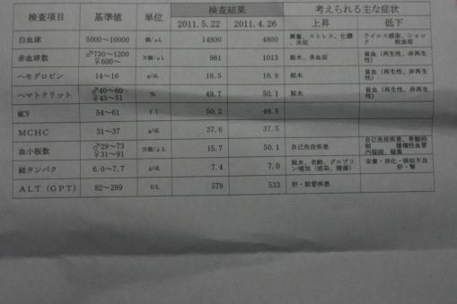 ジャックの採血結果(平成23年5月22日)