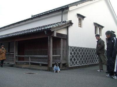 2010_12132010萩0011