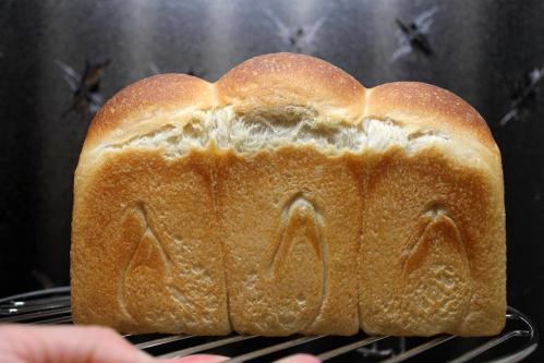 20100612ヨーグルト酵母で山食2