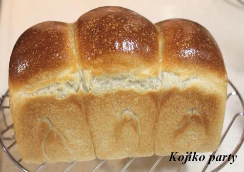 20100612ヨーグルト酵母で山食1