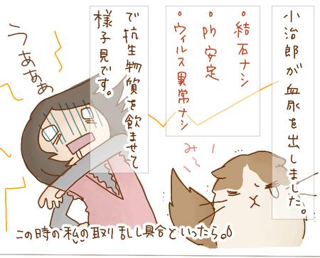 ketsunyou01_20091019094945.jpg