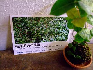 2011_0521三日月豆0002