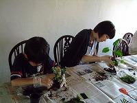 2011_0604三日月豆0003