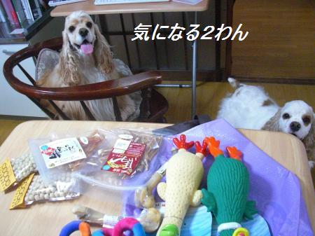 002_convert_20110817205633.jpg